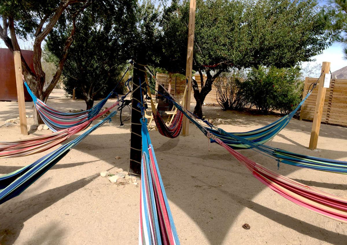 Finding Your Desert Zen at Joshua Tree
