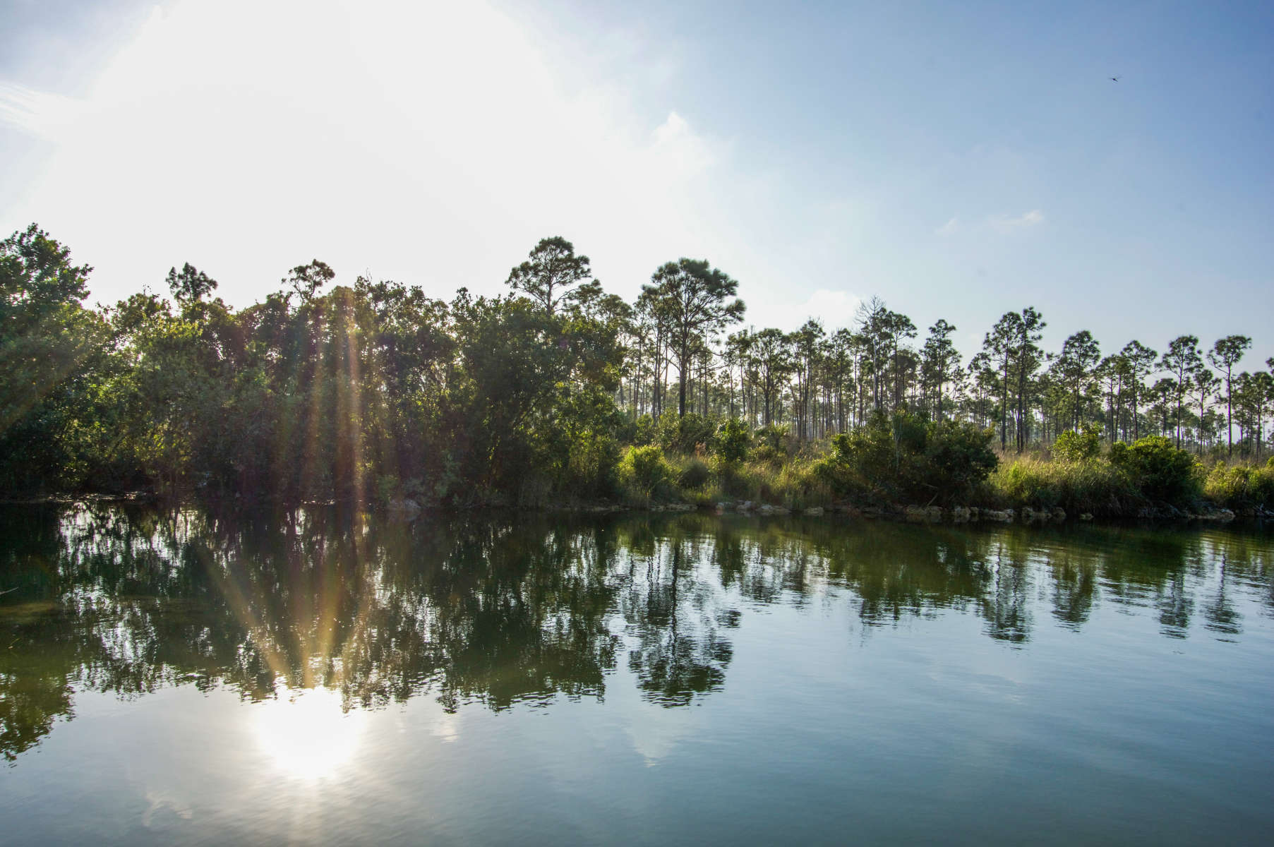 Best Camping In And Near Everglades National Park