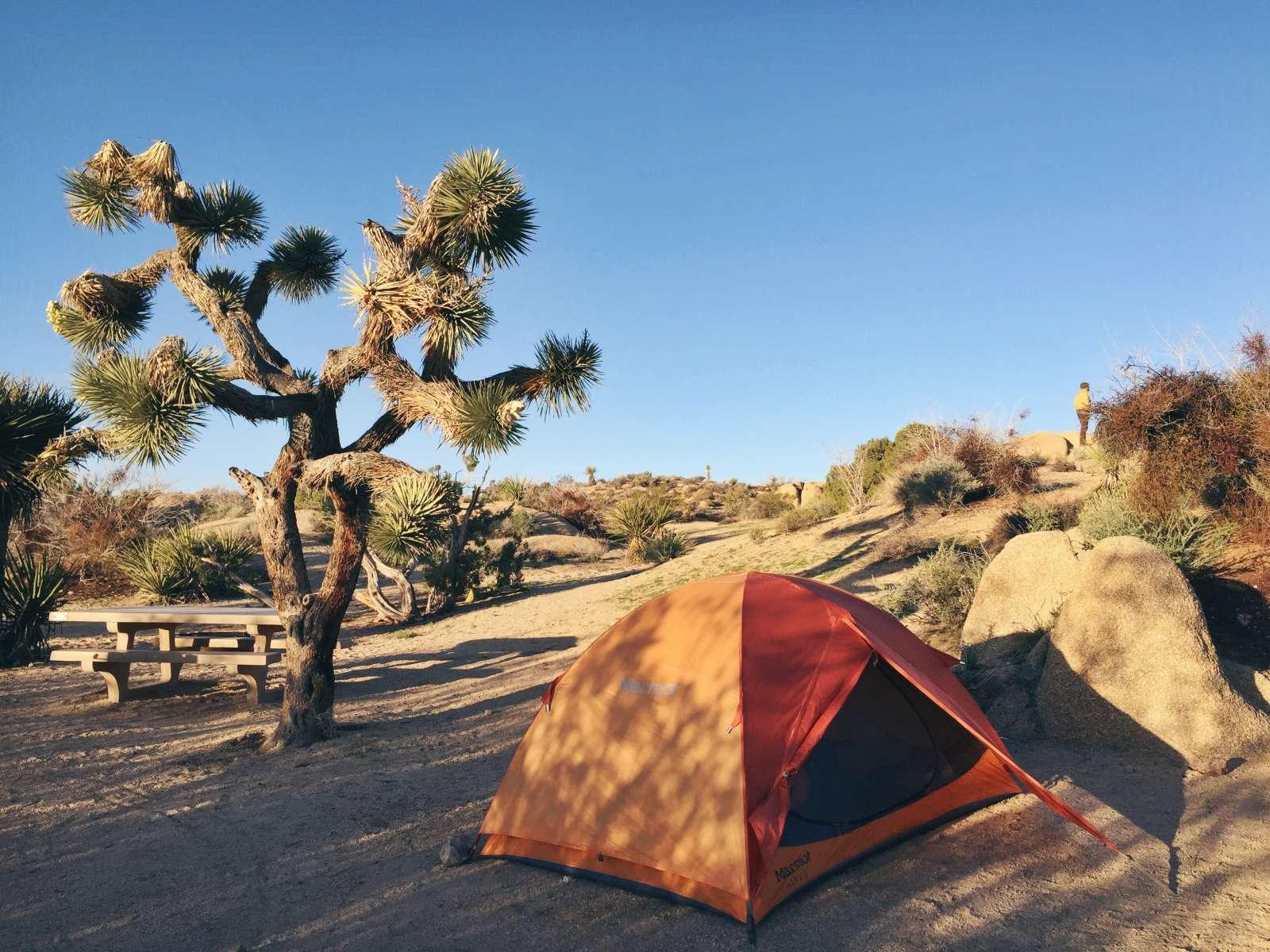 ... Sarah V.'s photo at Jumbo Rocks Campground ...