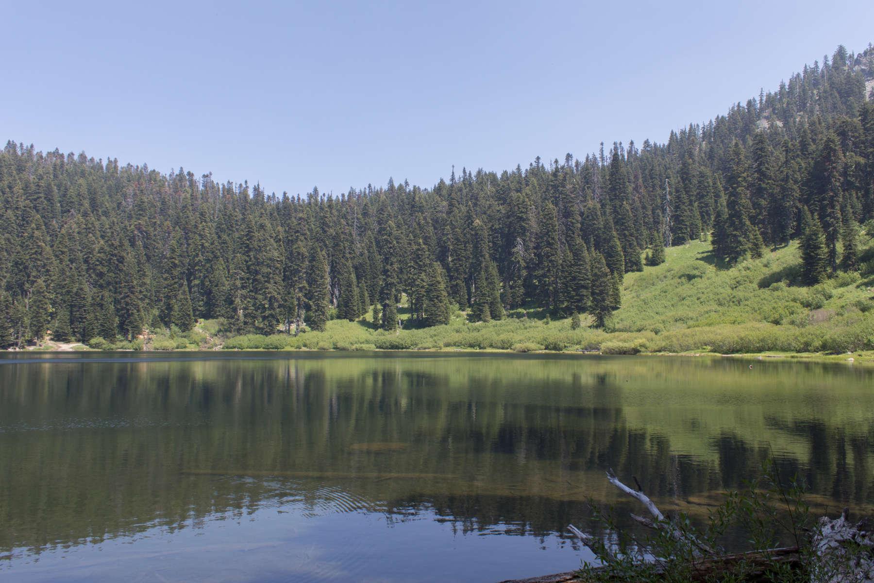 Bolan lake campground rogue river siskiyou or 1 for Lake siskiyou resort cabins