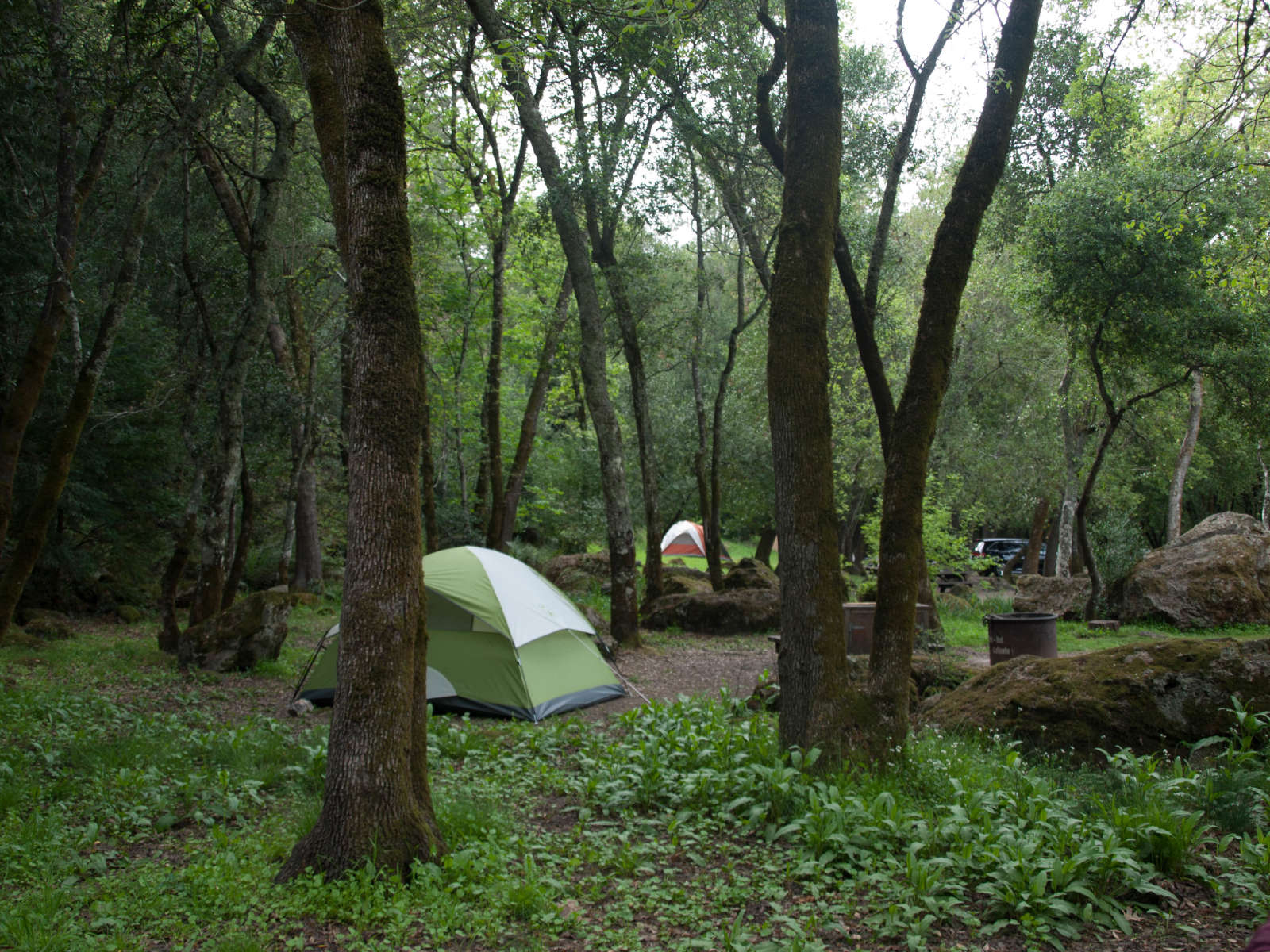 Best Camping In And Near Sugarloaf Ridge State Park
