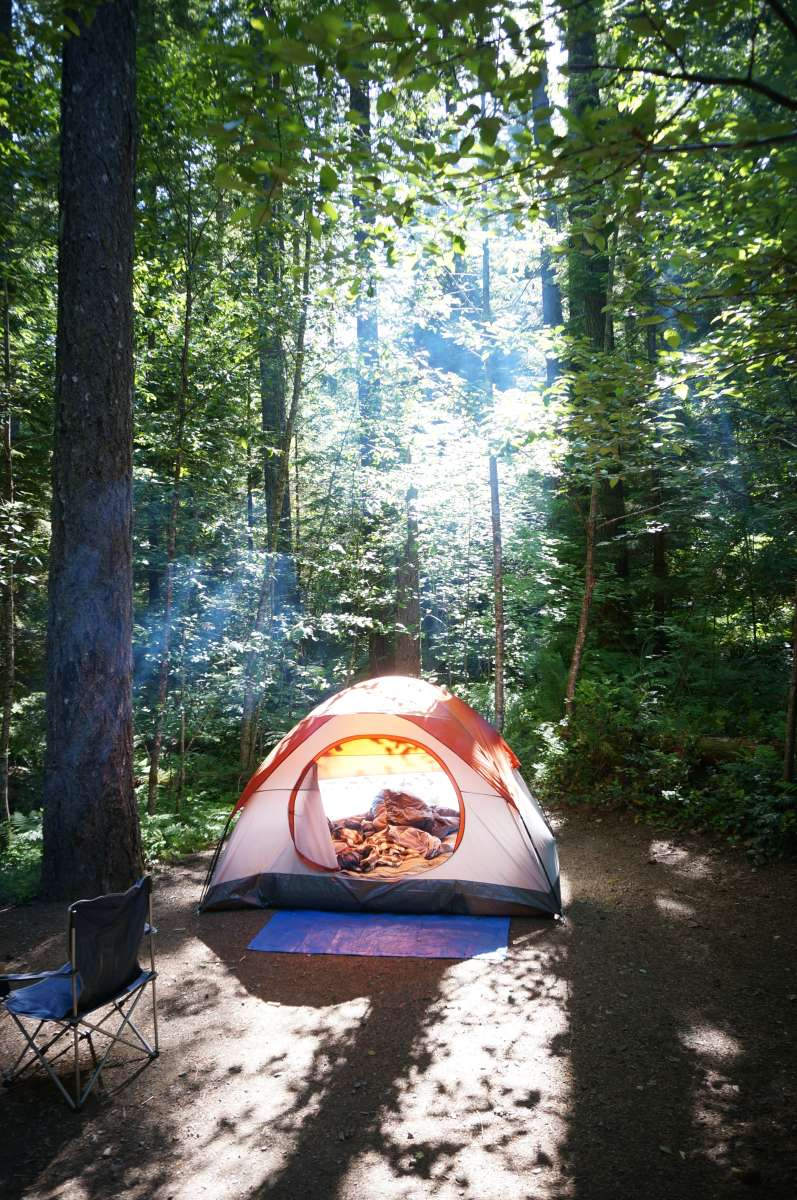 Cove Creek Campground Willamette Or 2 Photos