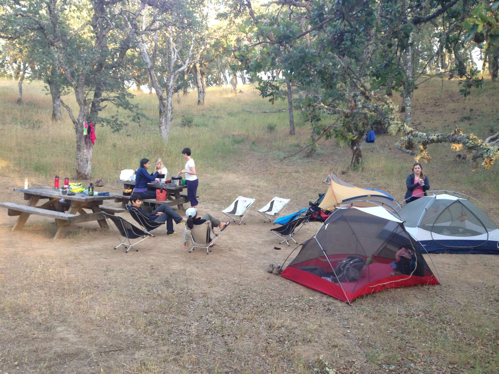 Forest Lake Auto Group >> Henry W. Coe State Park camping