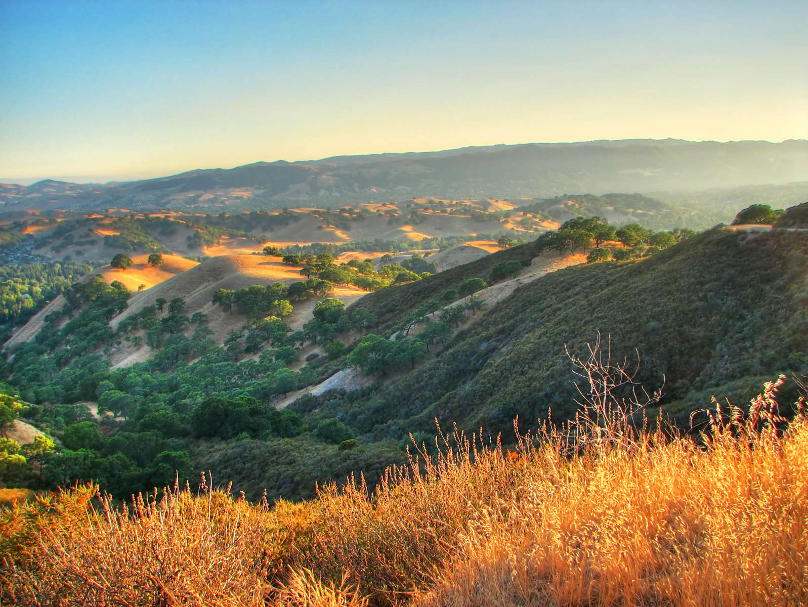 Best Camping In And Near Mount Diablo State Park