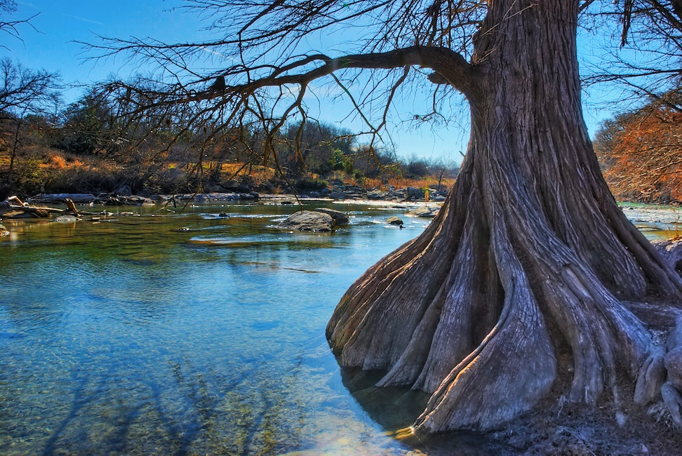 Guadalupe River State Park Camping