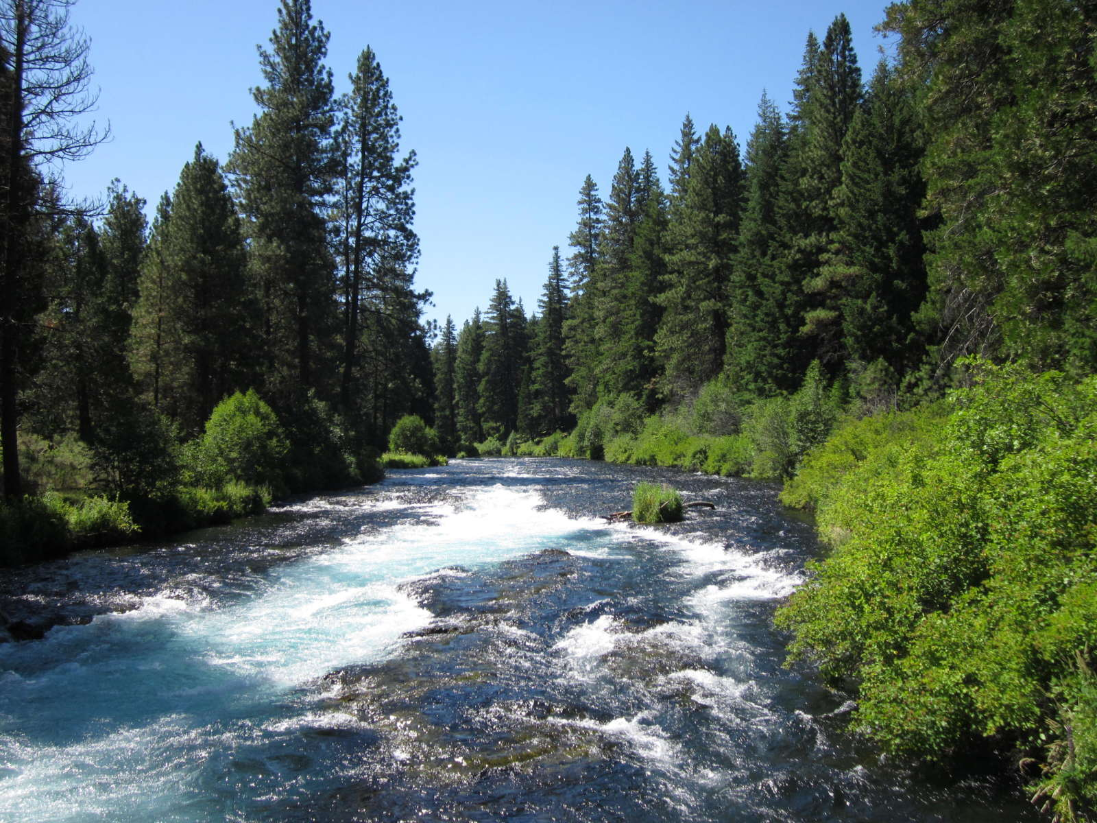 Best Camping In And Near Deschutes National Forest