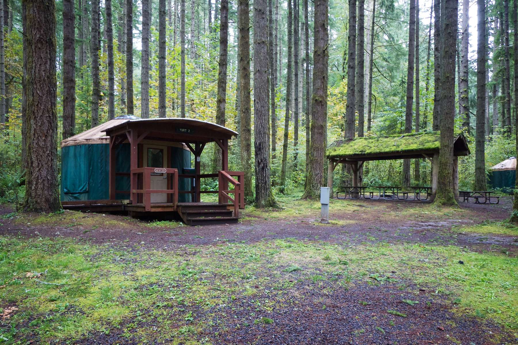 Seaquest campground seaquest wa 1 hipcamper review and for Oregon state parks yurts and cabins
