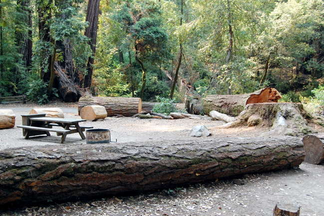 Sempervirens campground big basin redwoods ca 1 hipcamper hipcamp staffs photo at sempervirens campground sciox Images