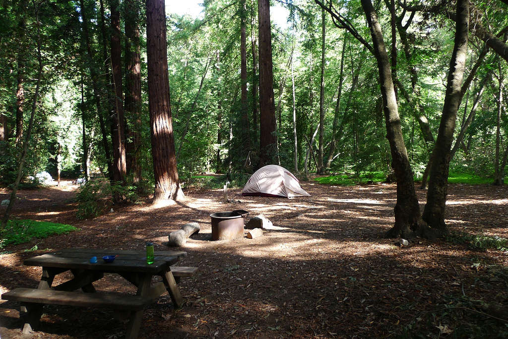 Pfeiffer big sur campground pfeiffer big sur ca 47 for Camping grounds with cabins