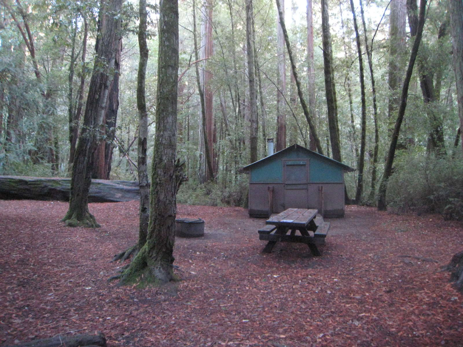 Elegant Hipcamp Staffu0027s Photo At Big Basin Tent Cabins ...