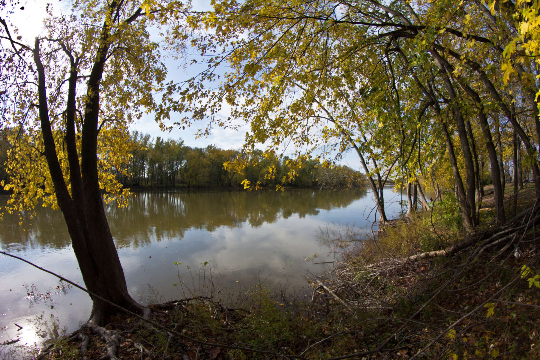 Forest Lake Auto Group >> Tippecanoe River Campground, Tippecanoe River, IN: 2 Hipcamper reviews and 4 photos