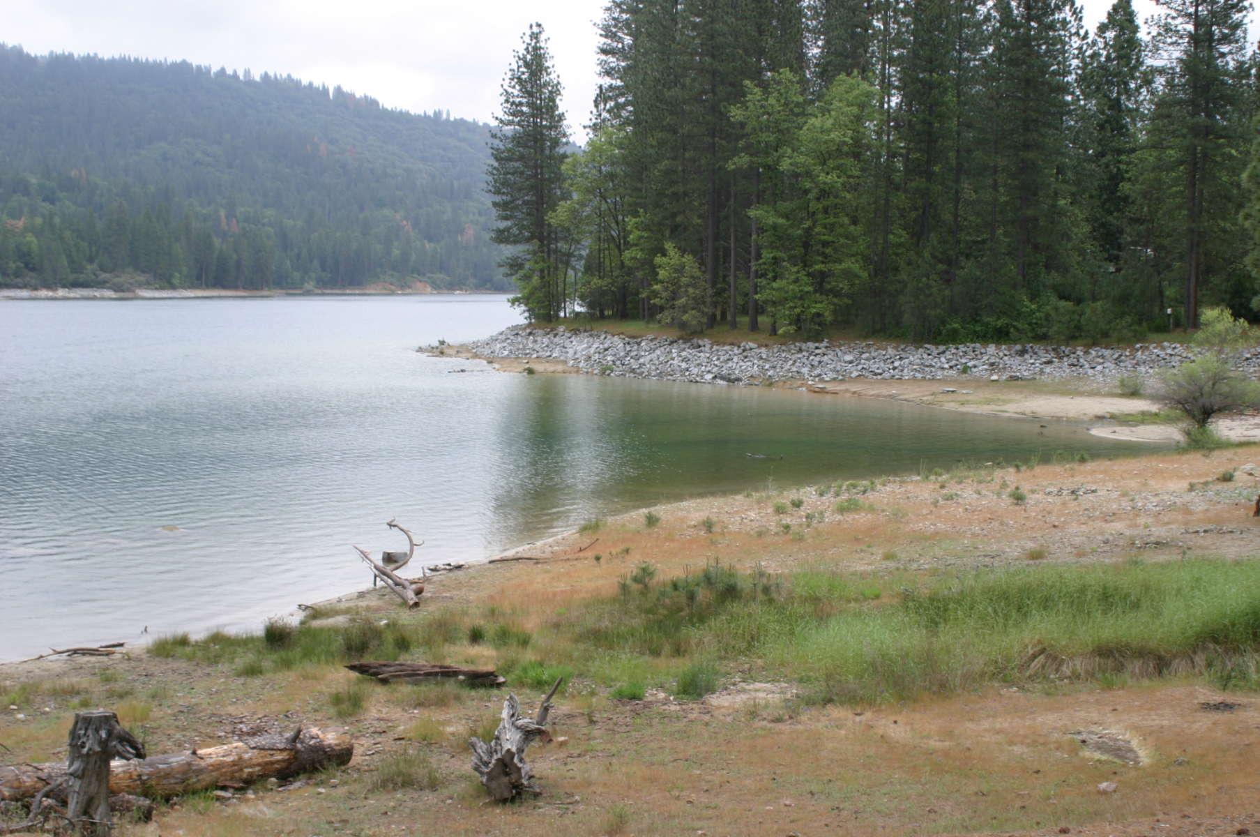 Lupine Campground Sierra Ca 3 Photos