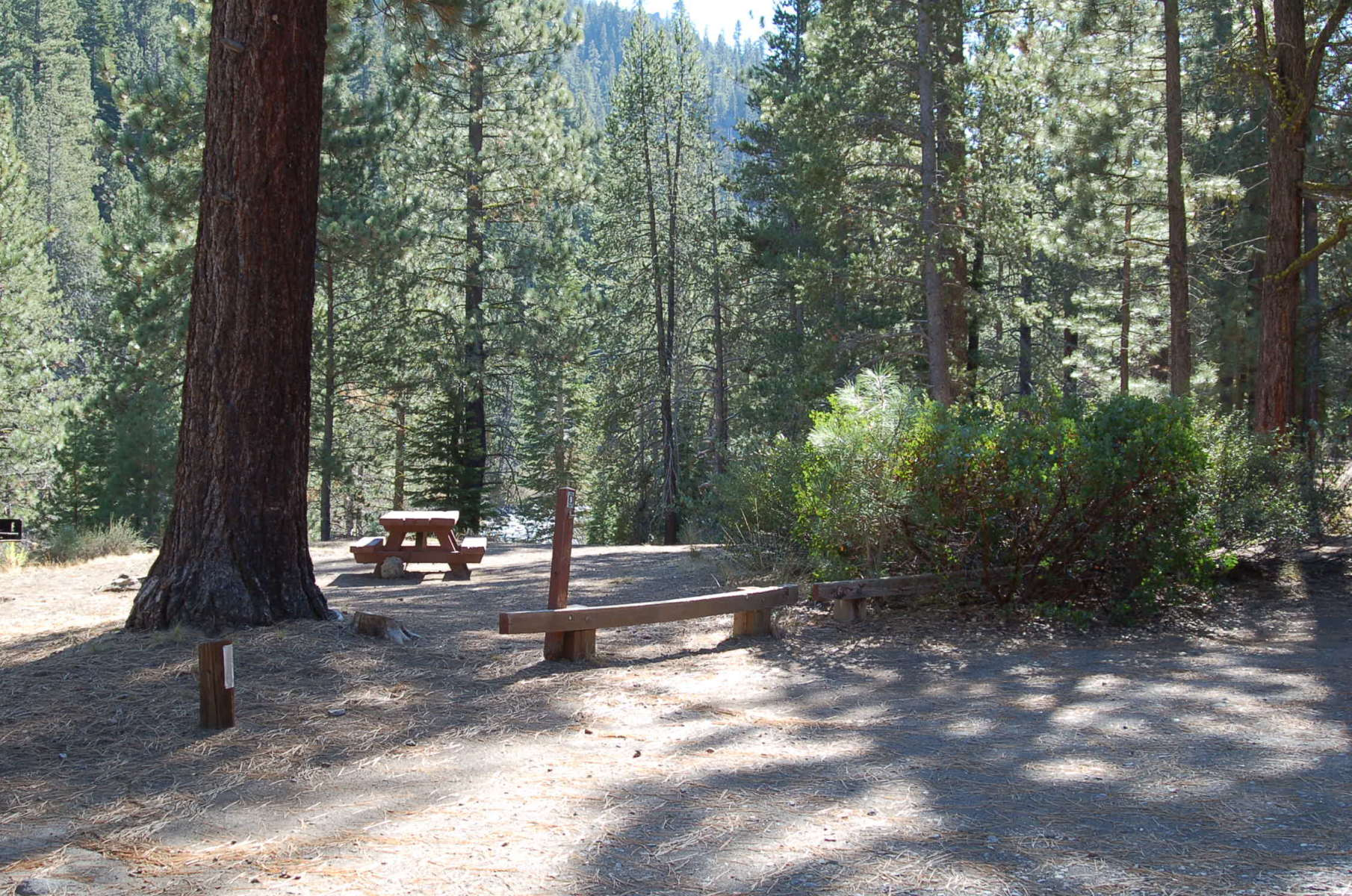 Goose Meadow Campground Tahoe Ca 2 Photos