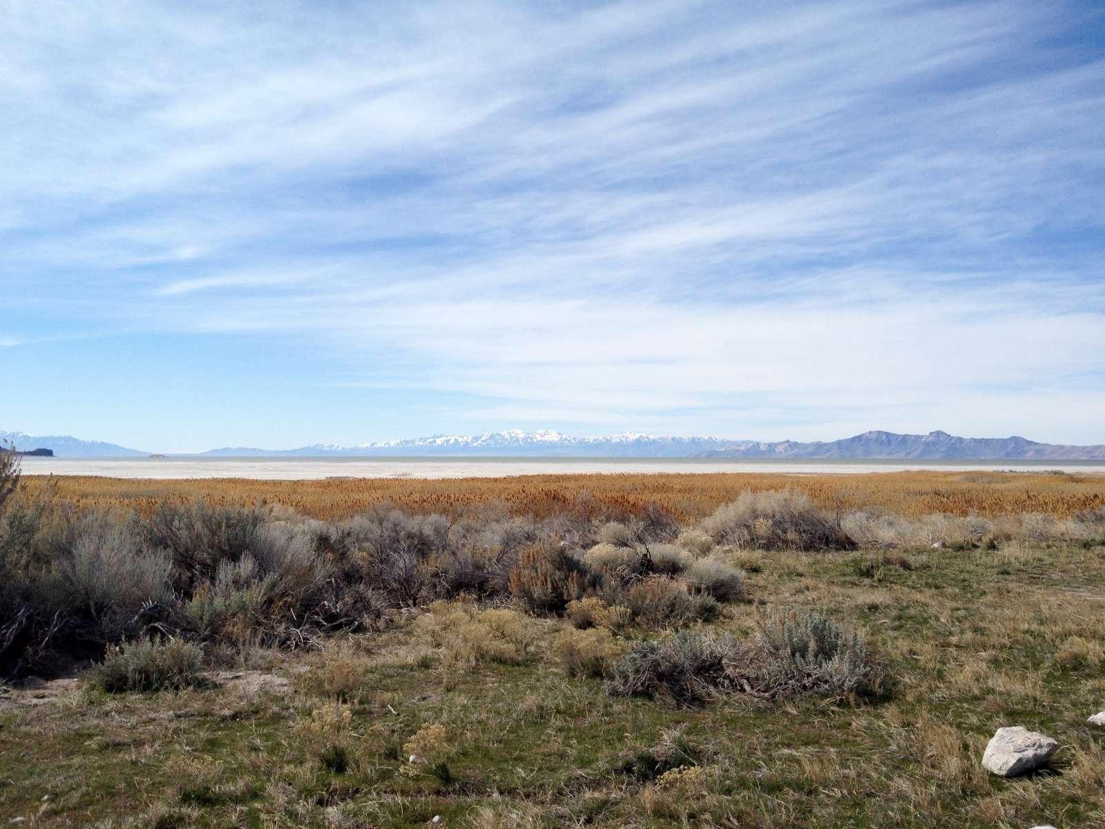 Antelope Island Campground Reviews