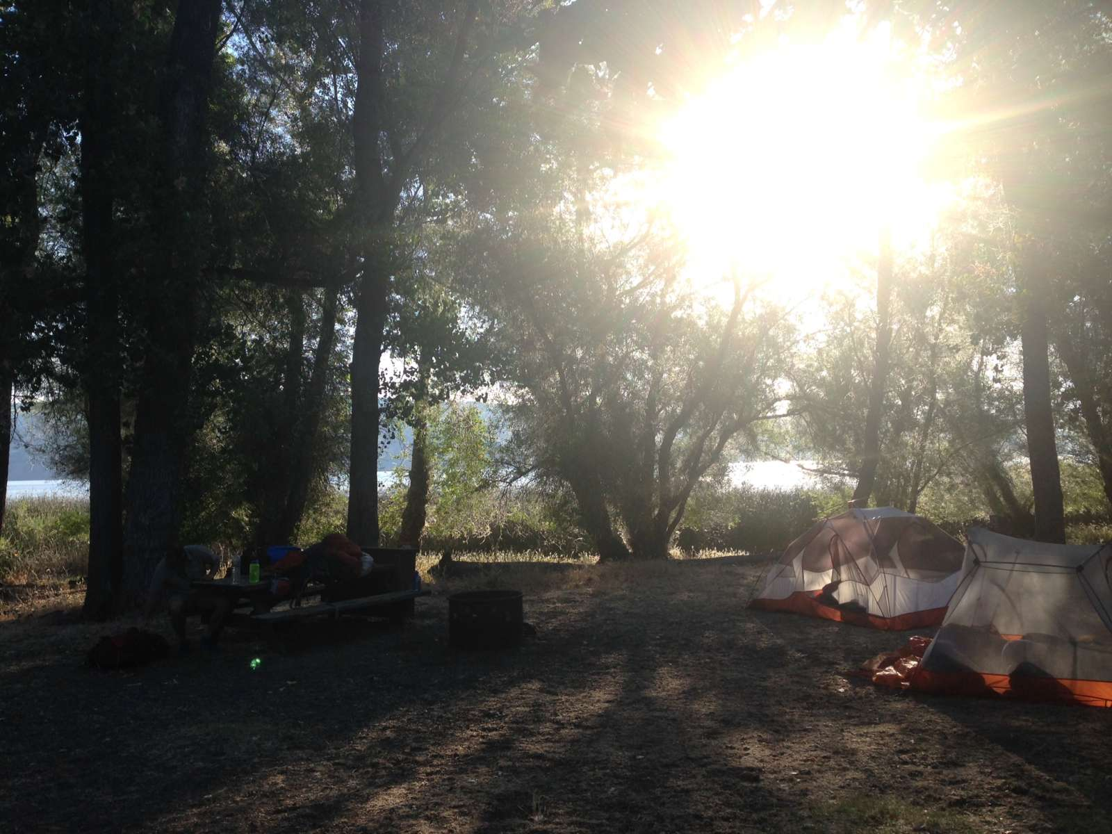 Kelsey Creek Campground Clear Lake Ca 3 Hipcamper