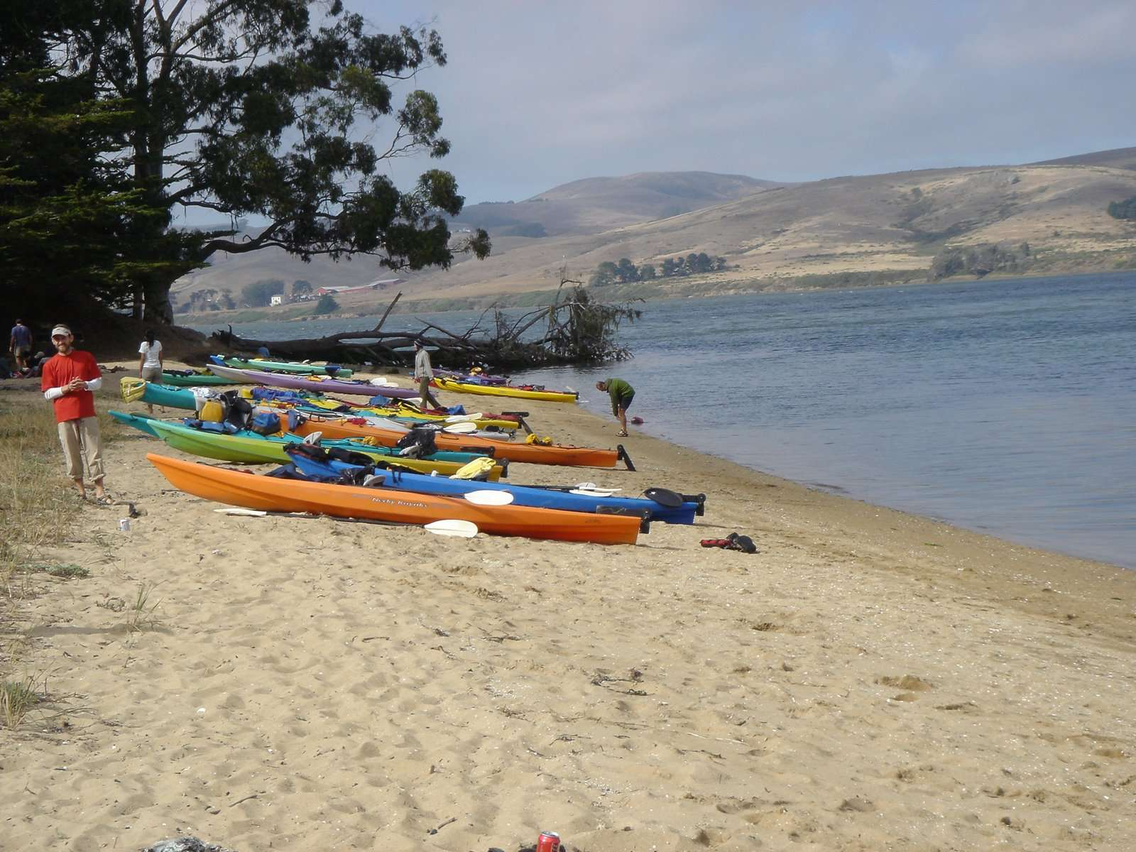 ... Jason M.u0027s Photo At Tomales Bay ...