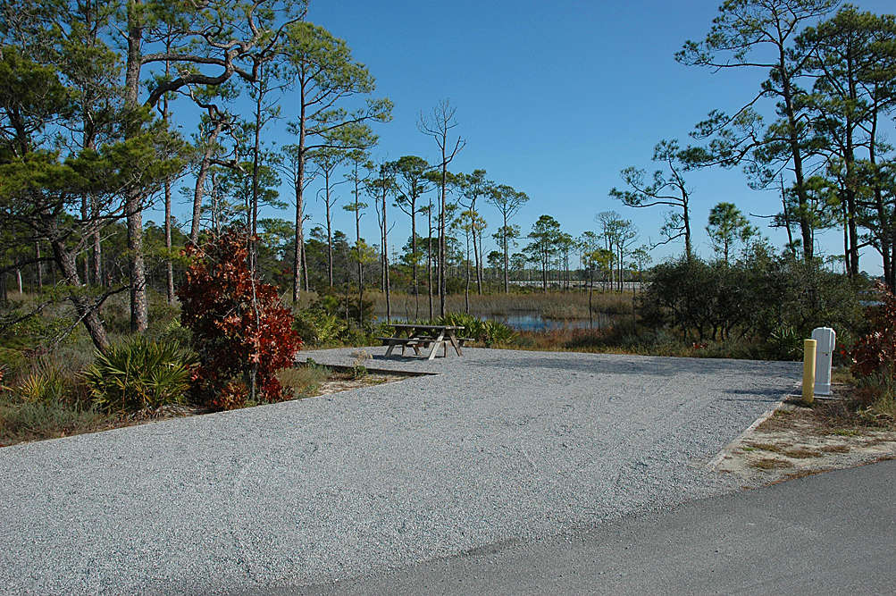 Eric E S Photo At Grayton Beach Campground
