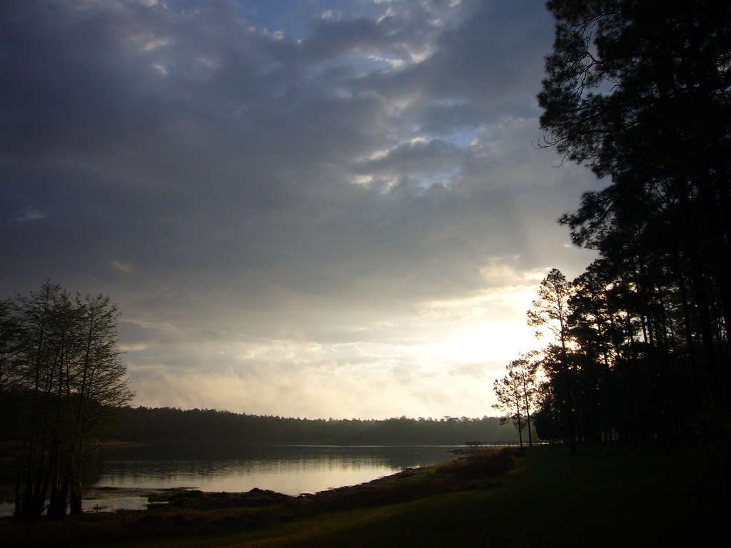 Forest Lake Auto Group >> Open Pond Recreation Area, Conecuh, AL: 4 photos