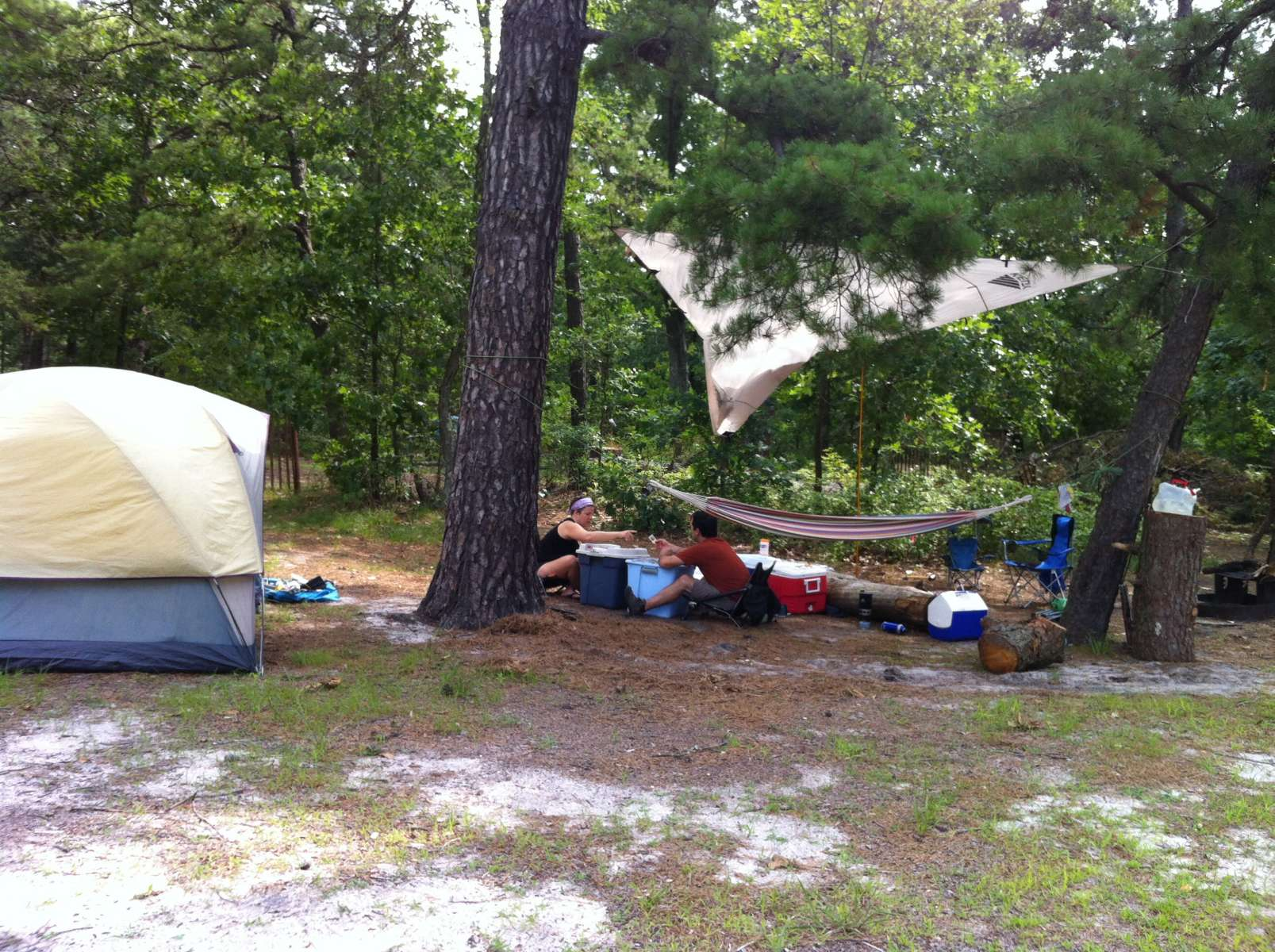 Goshen pond camping area wharton nj 3 hipcamper reviews for Wharton state forest cabins