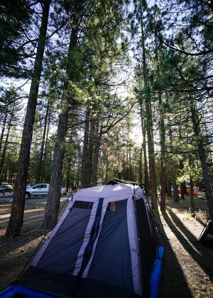 California Rv Show >> Barton Flats Campground, San Bernardino, CA: 7 Hipcamper reviews and 13 photos