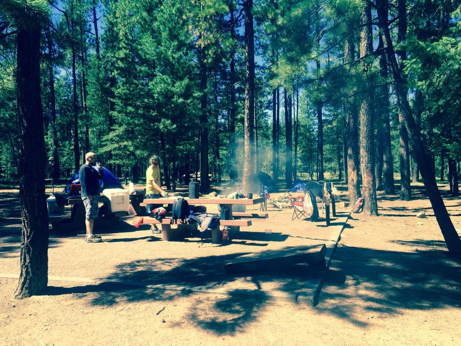 knoll lake campground coconino az 5 photos