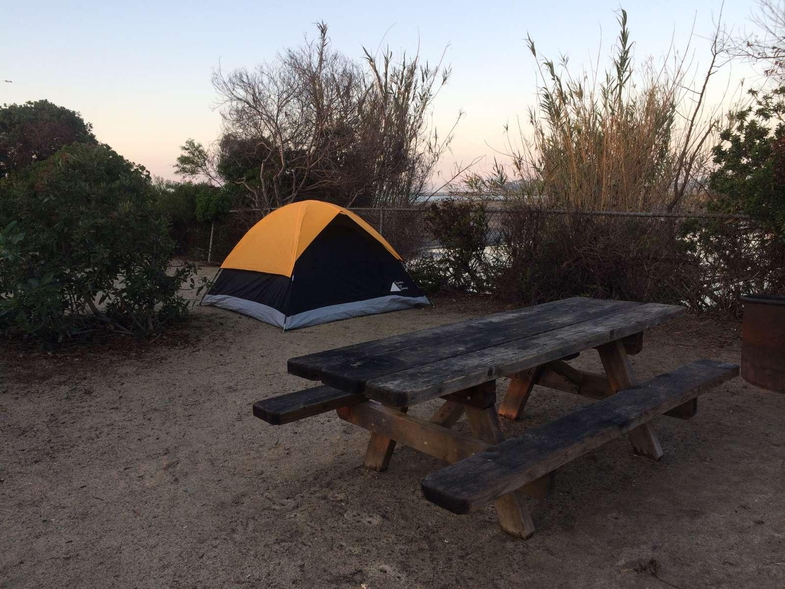 Doheny Campground Ca 7