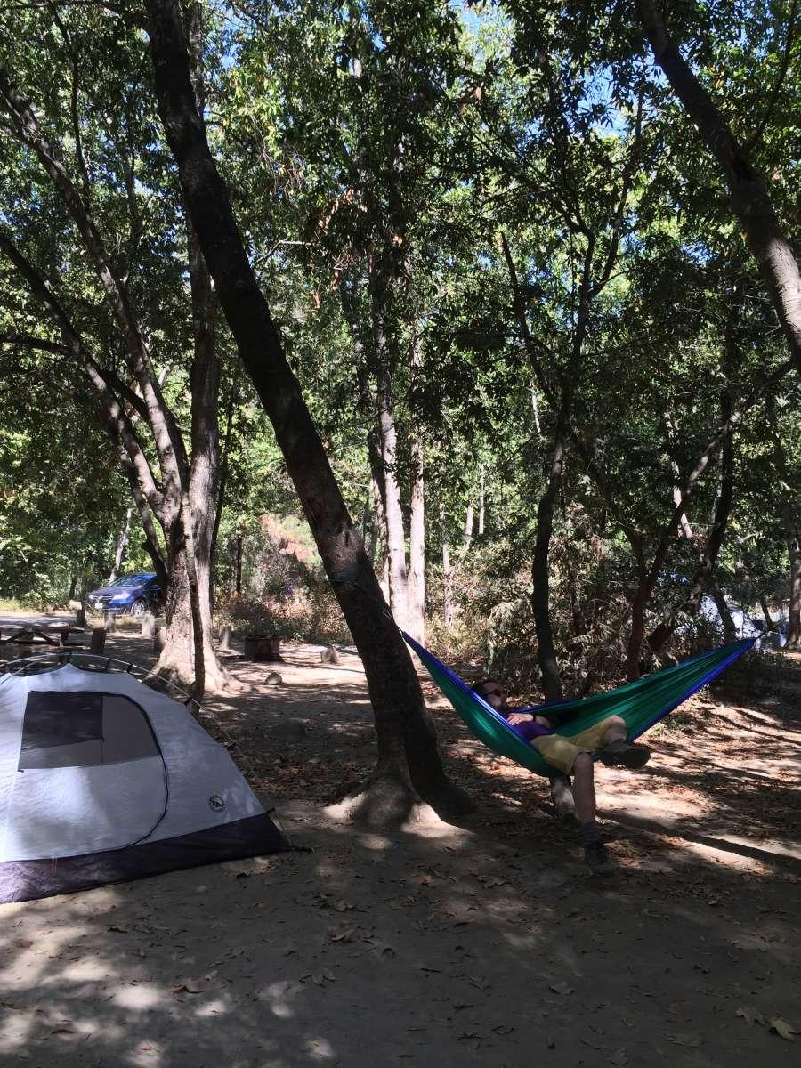 pfeiffer big sur campground, pfeiffer big sur, ca: 57 hipcamper