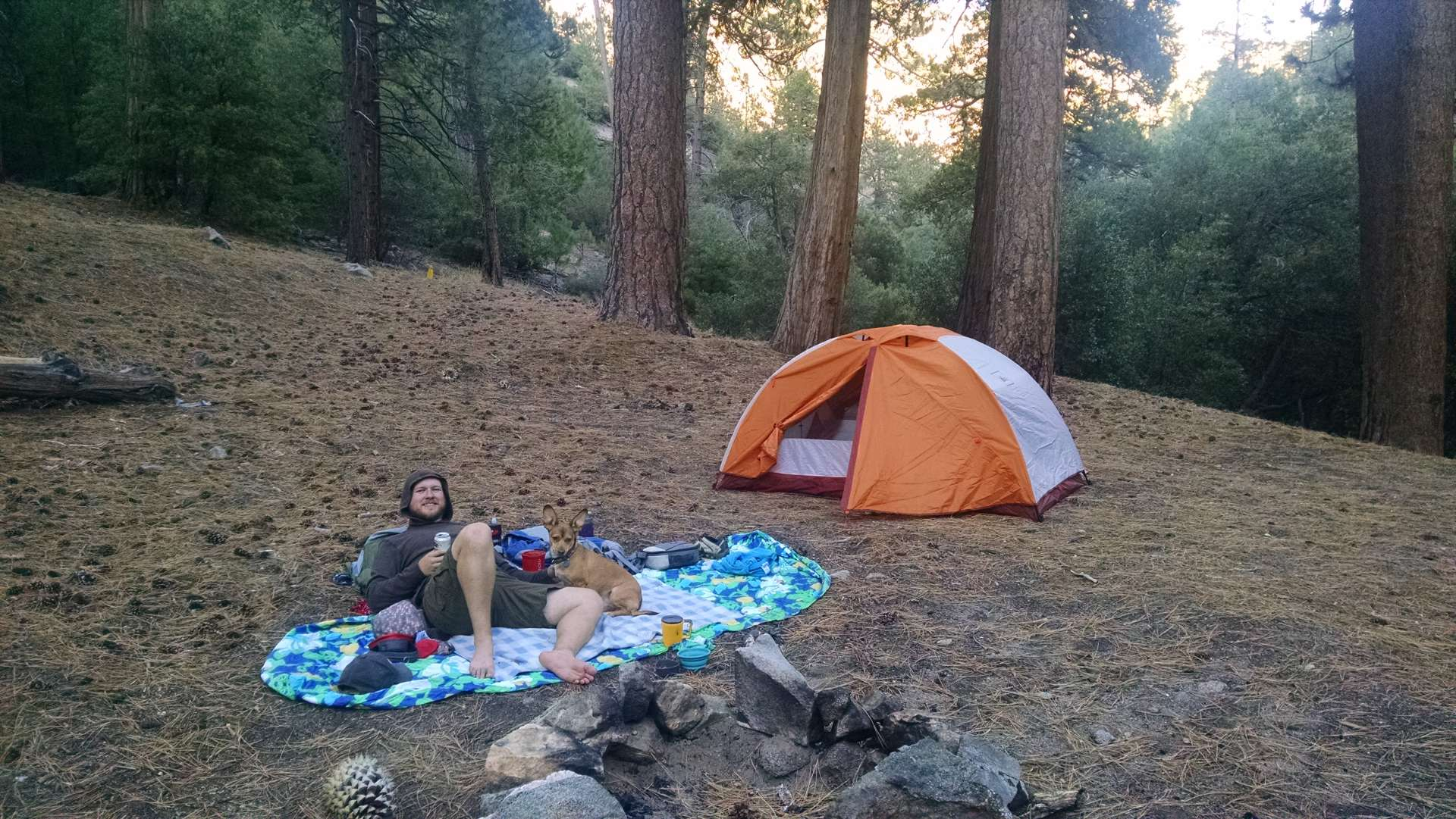 Cooper canyon trail camp angeles ca 4 hipcamper reviews for Camping cabins near los angeles