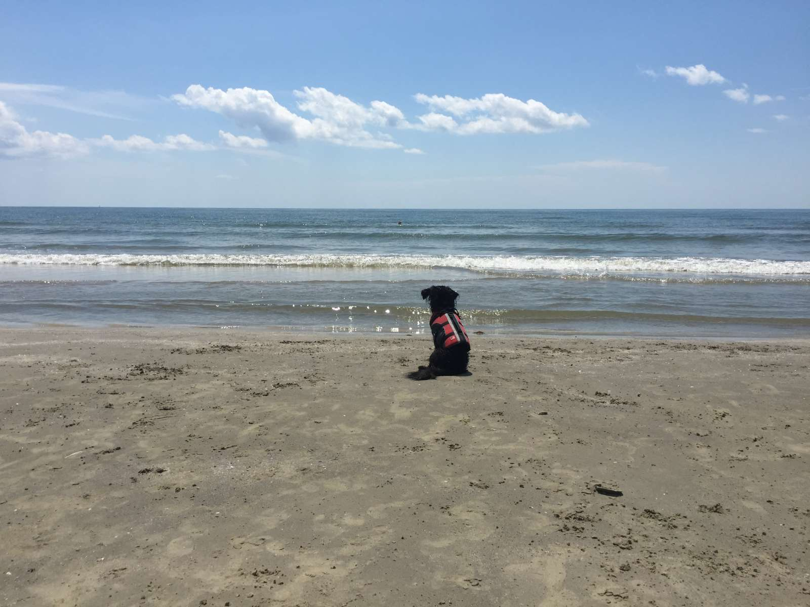 Best Camping in and Near Galveston Island State Park