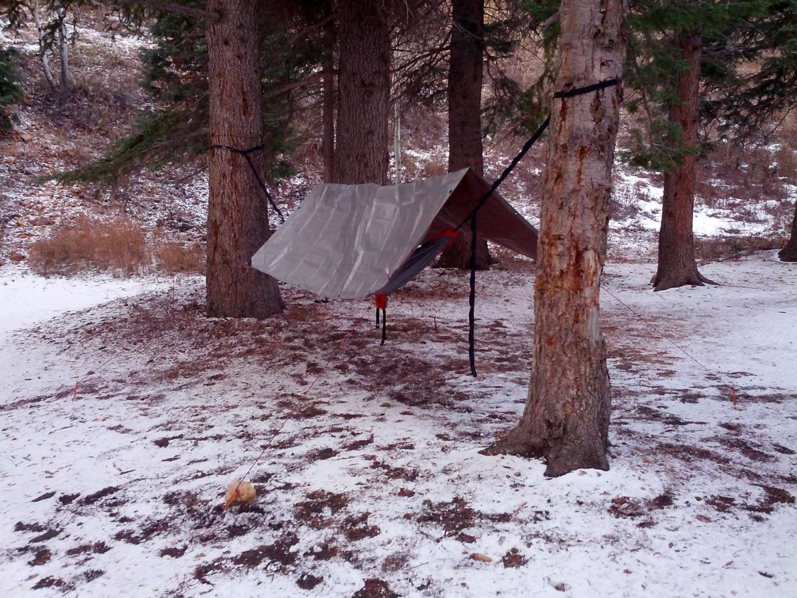 Best Camping In And Near Dixie National Forest