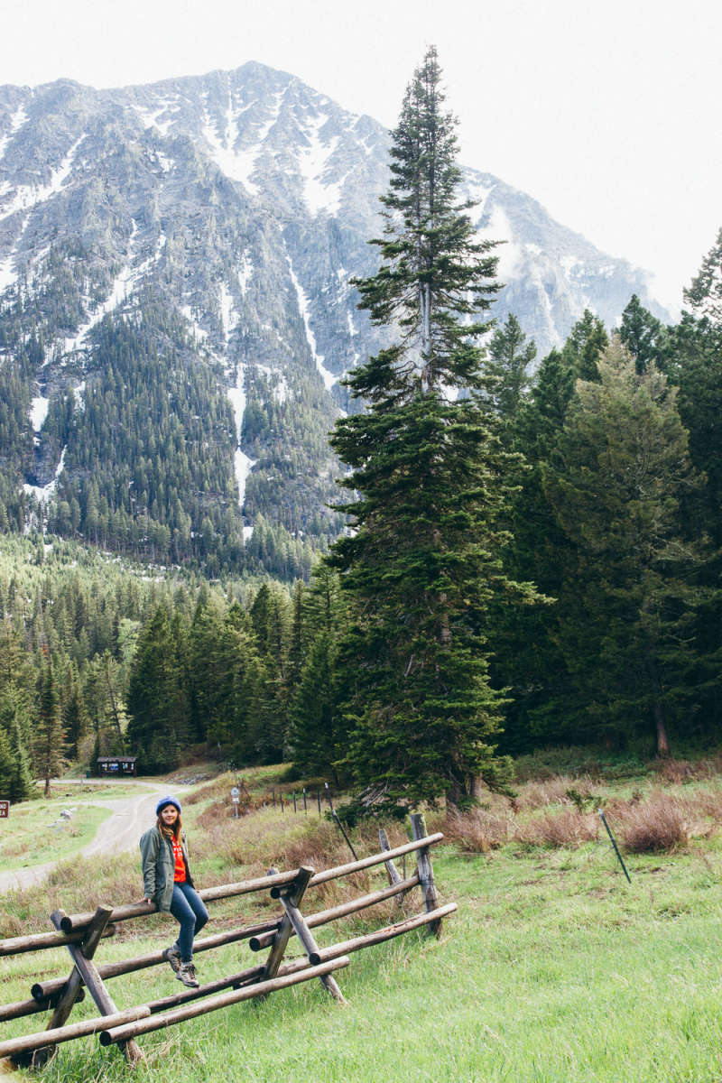 Forest Lake Auto Group >> Custer Gallatin National Forest camping