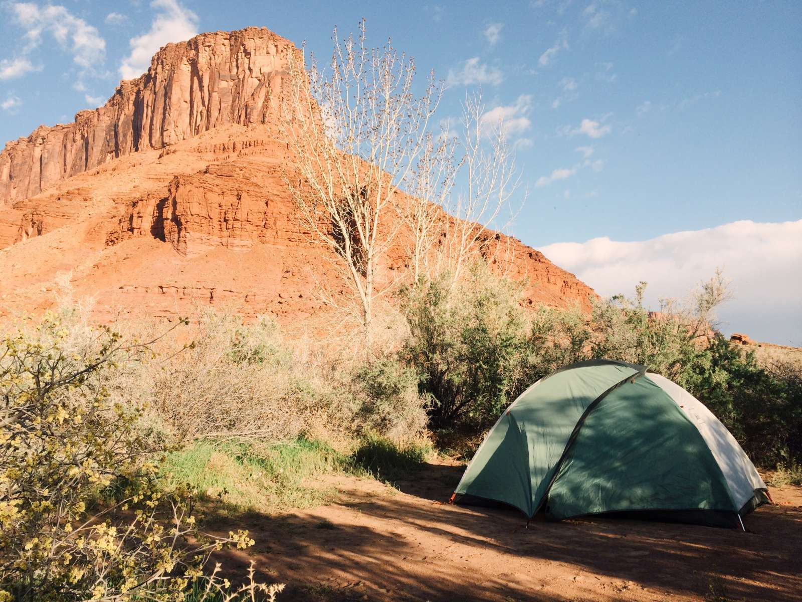 Hittle Bottom Campground Moab Ut 10 Photos