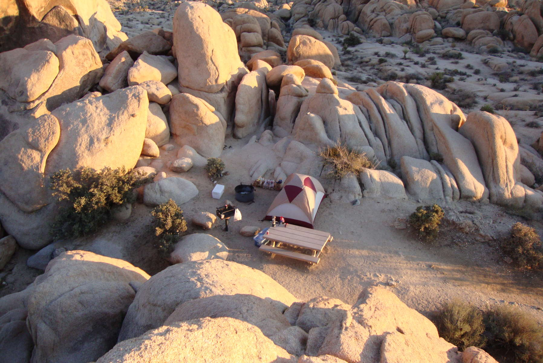 white tank campground, joshua tree, ca: 5 hipcamper reviews and 40