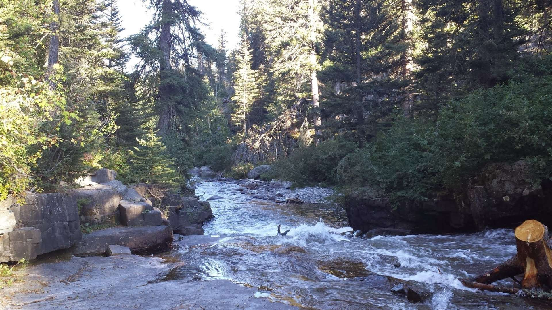 Custer Gallatin National Forest Camping