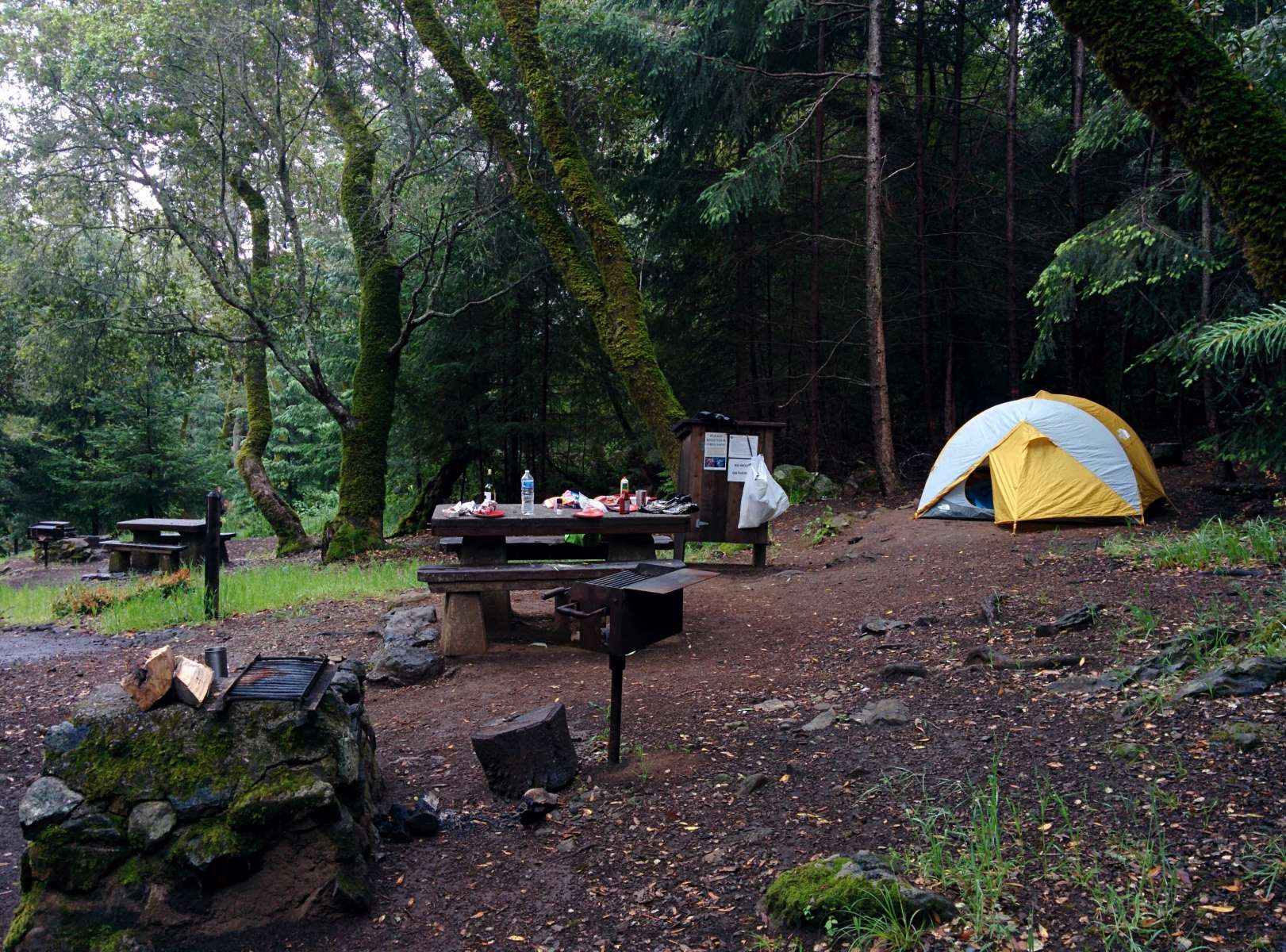 bootjack campground mount tamalpais ca 11 hipcamper reviews and