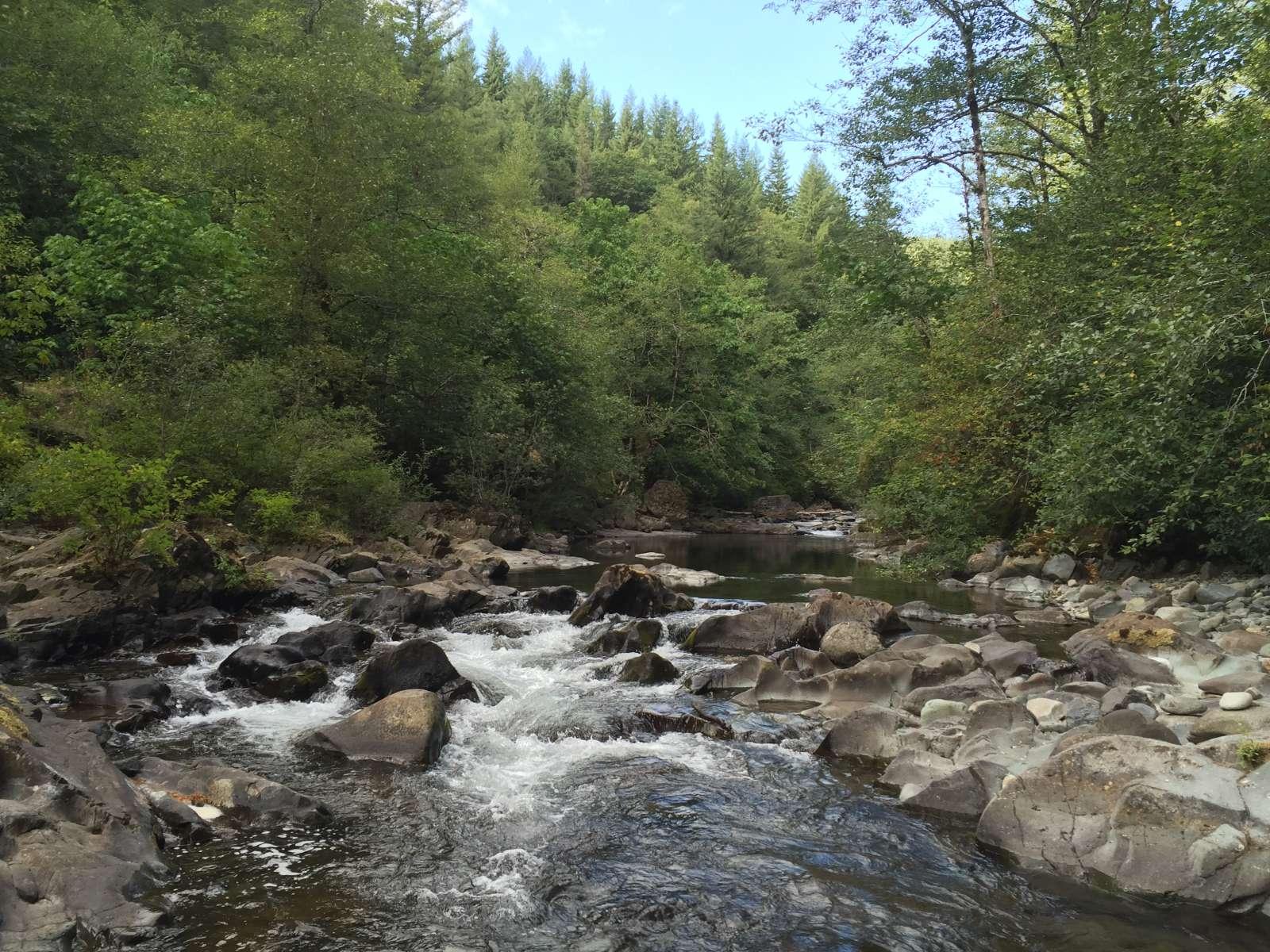 A beautiful hidden waterfall in Gifford Pinchot National