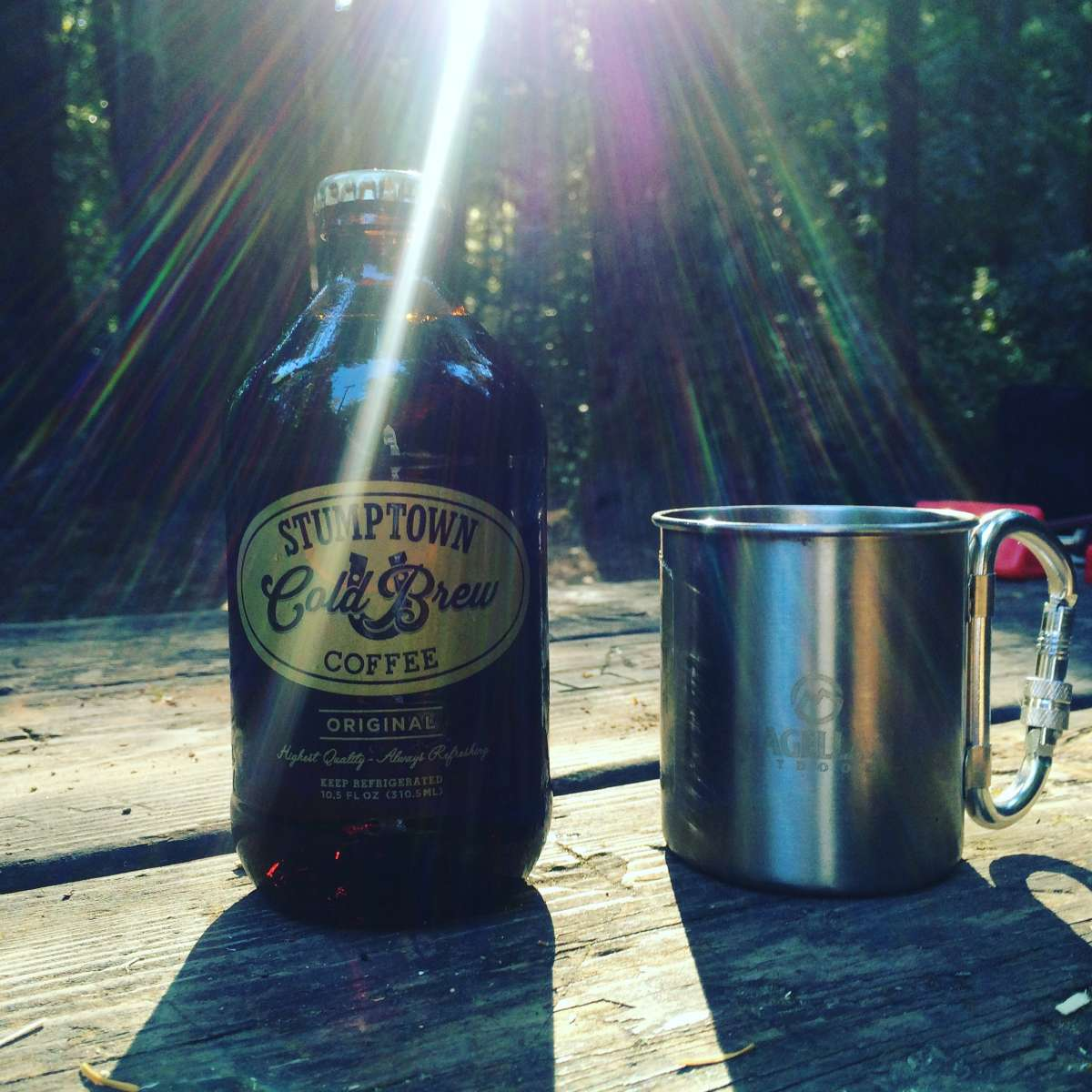 Big Basin Redwoods State Park Camping