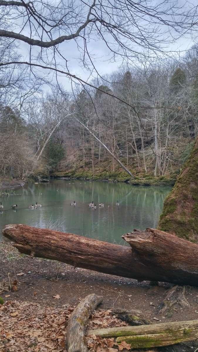 John Bryan State Park Camping