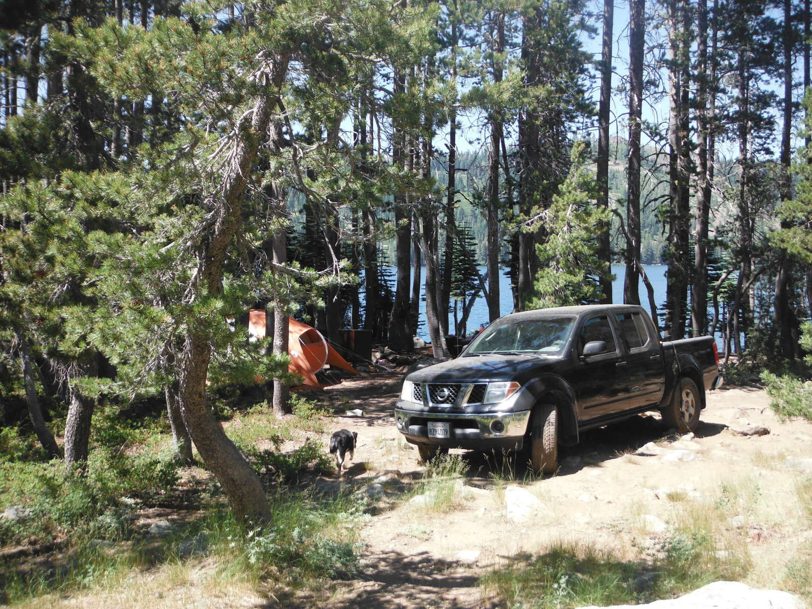 Plumas National Forest Camping