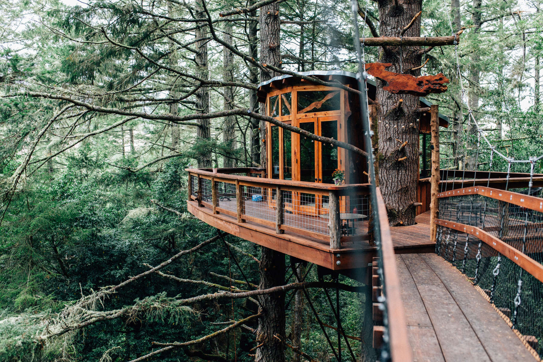 Treehouse eagle's nest treehouse farmstay, salmon creek ranch, ca: 65