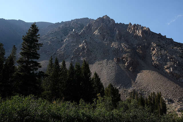 Forest Lake Auto Group >> Humboldt-Toiyabe National Forest camping