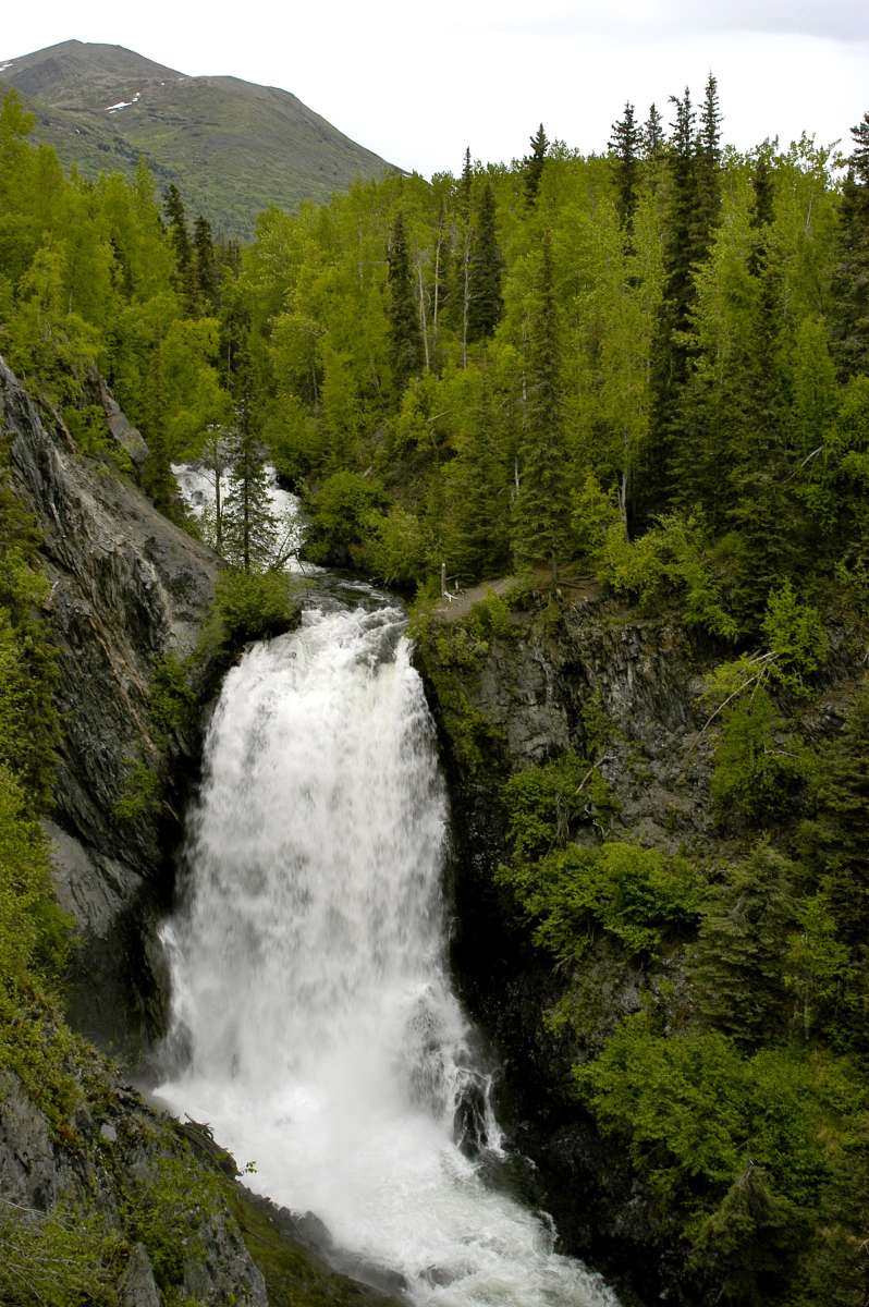 Chugach National Forest Camping