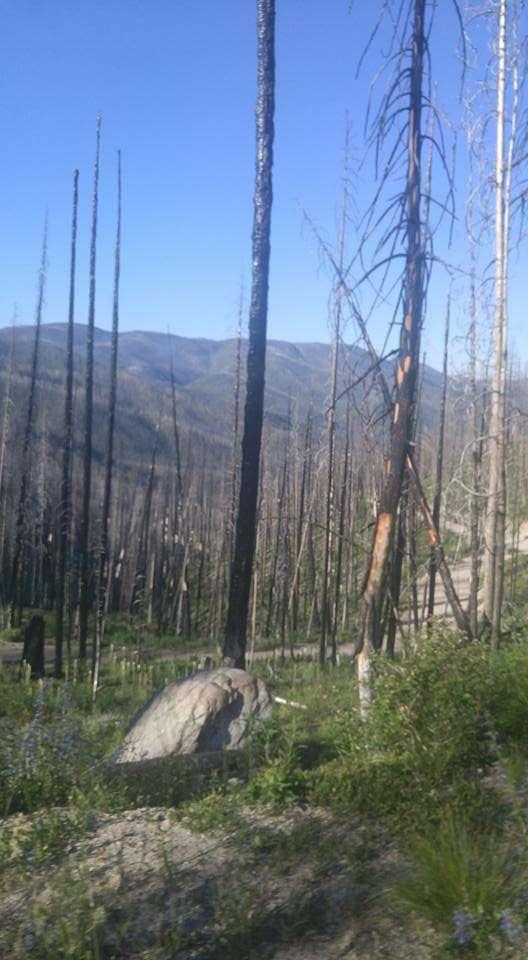 Horse Creek Hot Spring Campground Salmon Challis Id 1