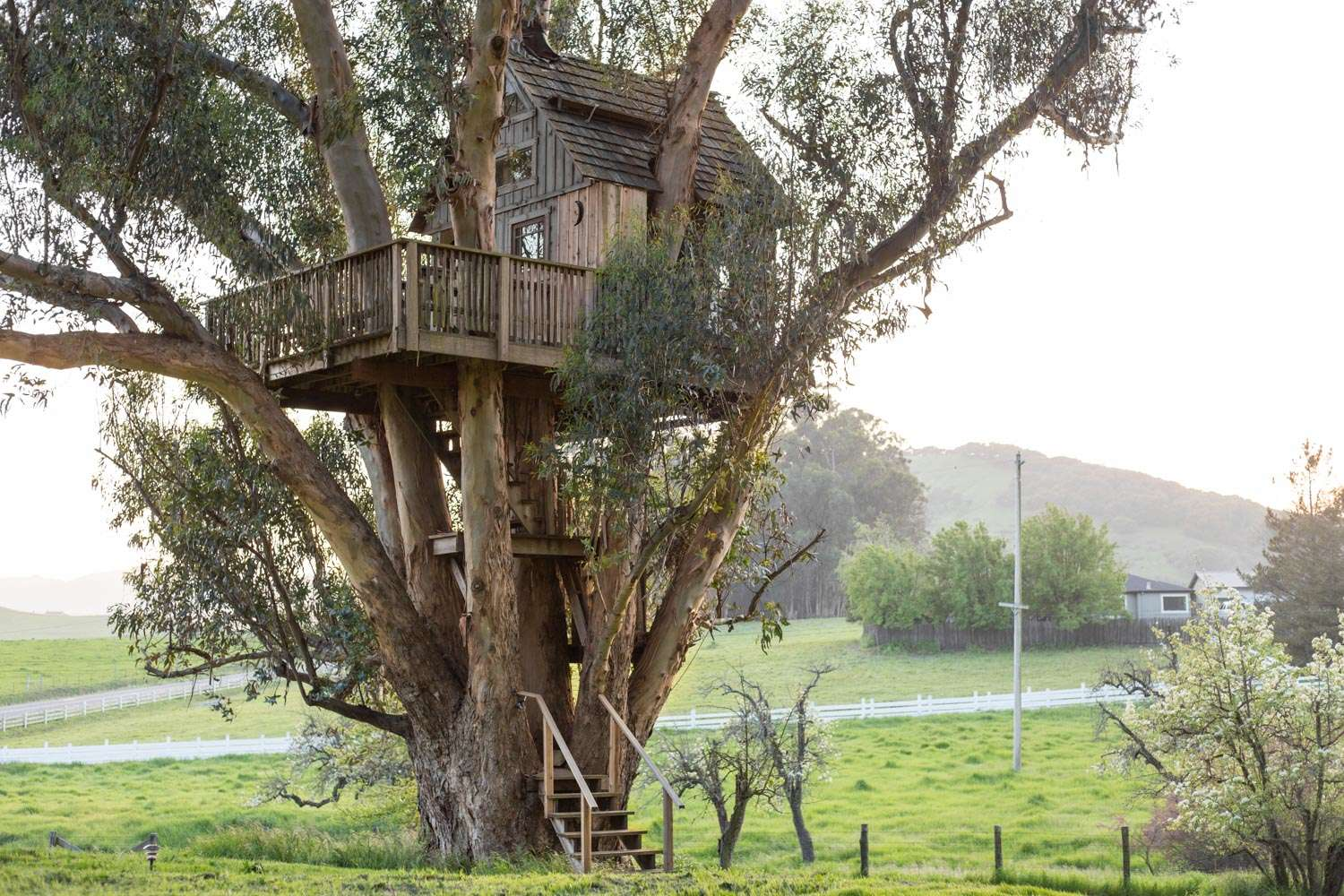 Treehouse treehouse at swallowtail studio, magical, romantic treehouse, ca