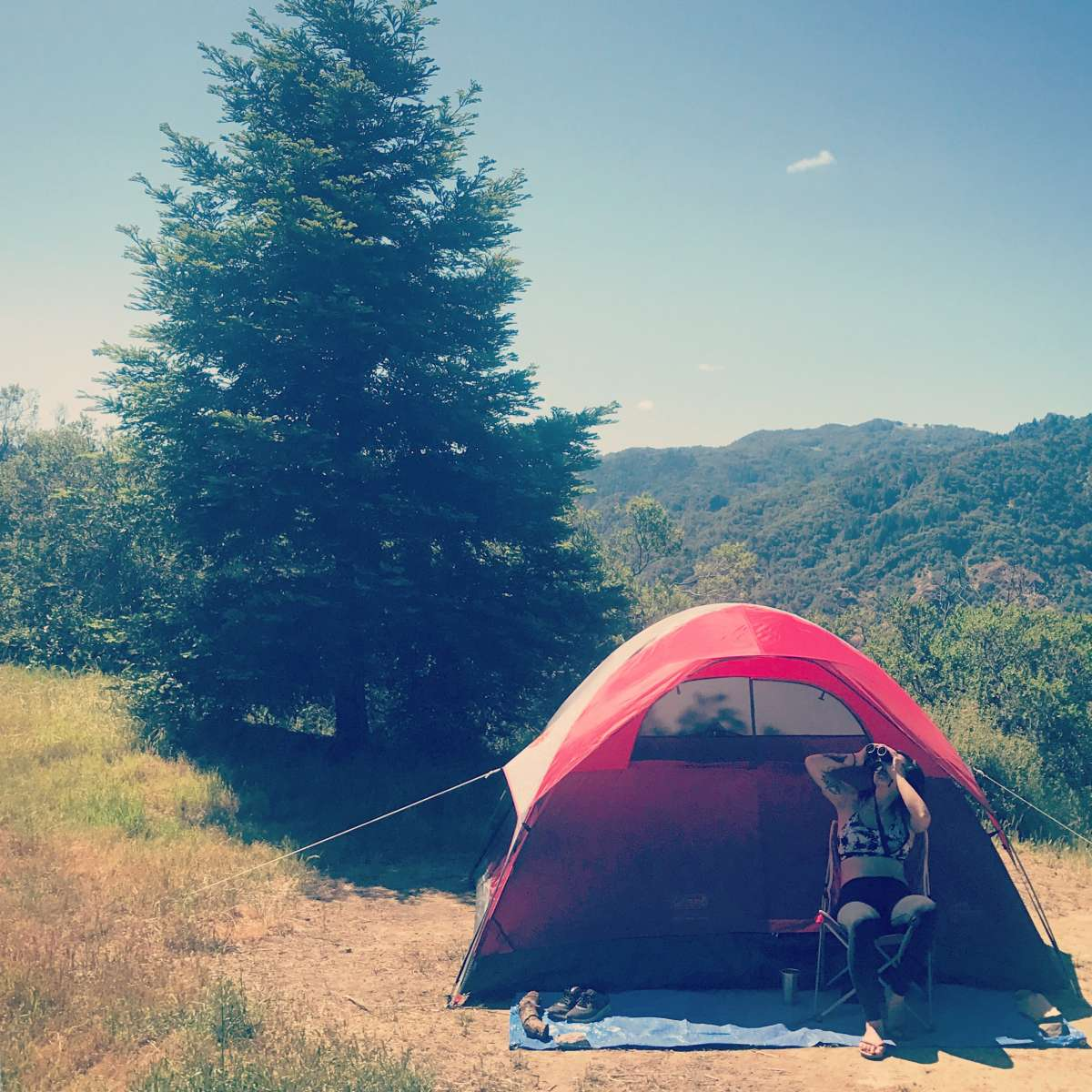 Best camping in and near lake sonoma for Lake sonoma fishing report