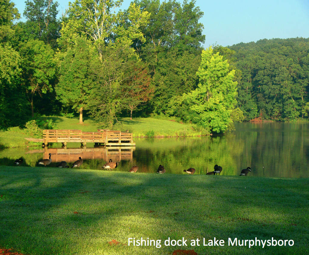 Heron house camping for Kinkaid lake fishing report