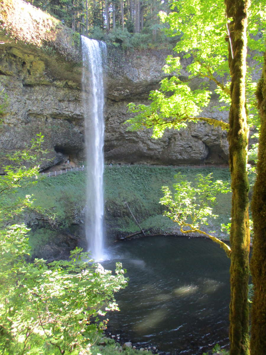 Best Camping In And Near Silver Falls State Park