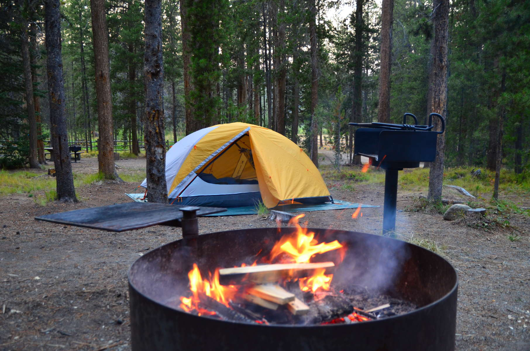 Best Camping In And Near Beaverhead Deerlodge National Forest