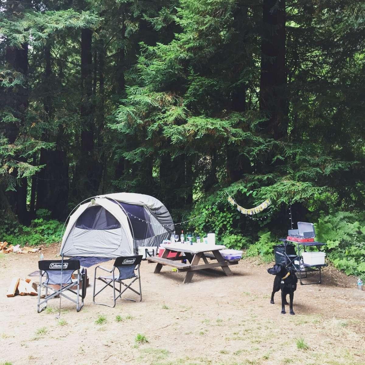 Camp Creek Apartments: Creekside Camp, Salmon Creek Ranch, CA: 174 Hipcamper