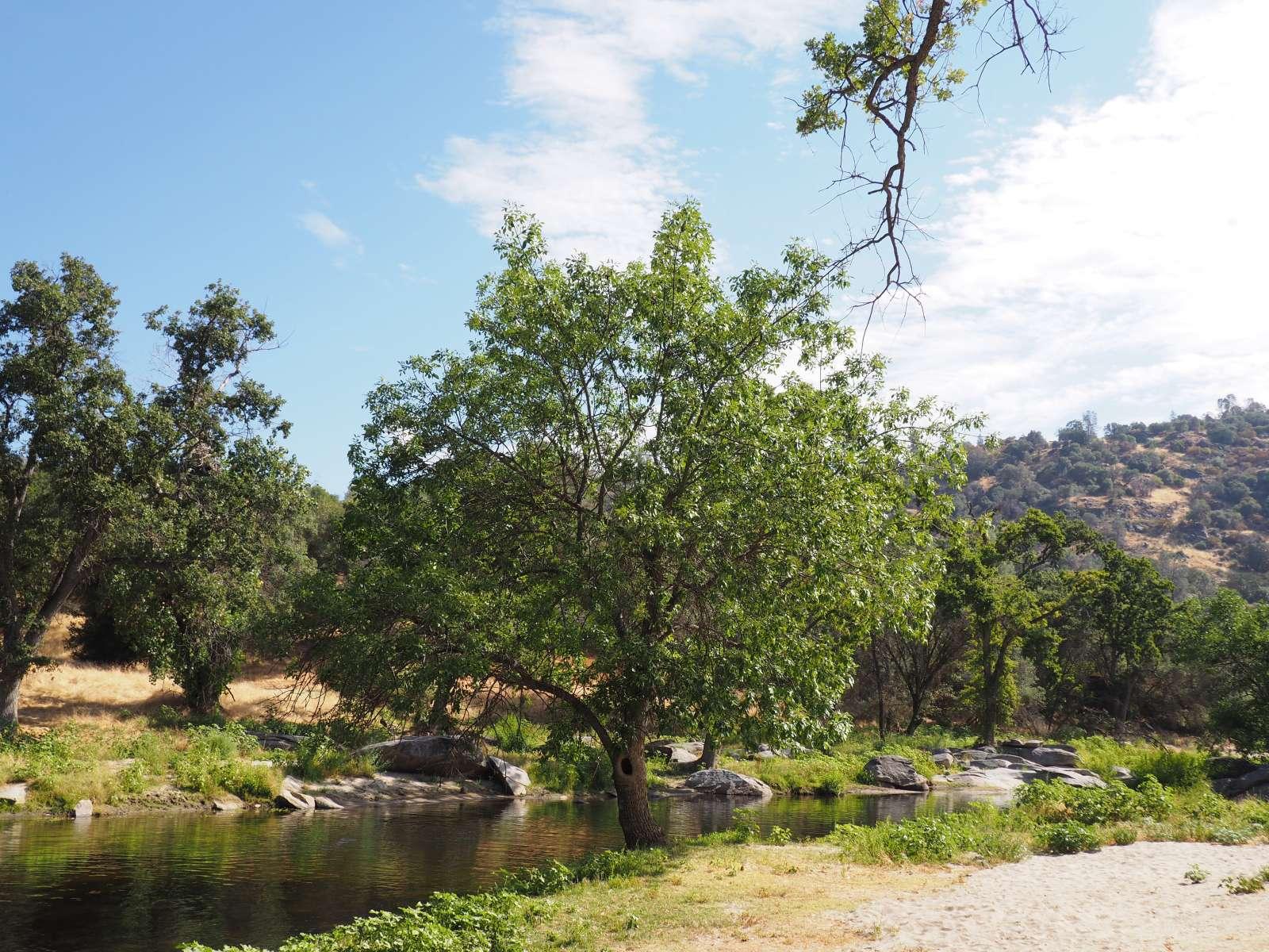 Adan Vs Photo At 1000 Acre River Ranch